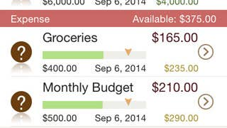 Mobile app review: Money Monitor