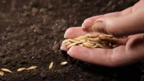 Planting the seeds for rate hikes