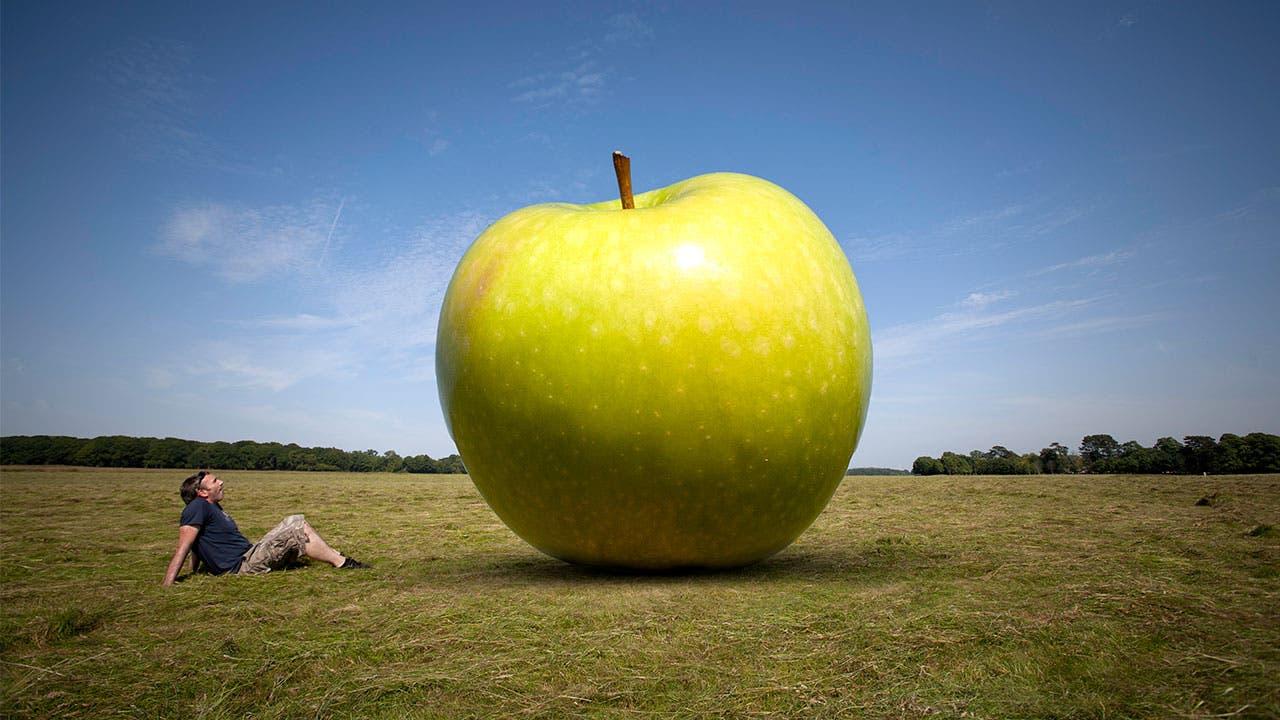 giant green apple in a field