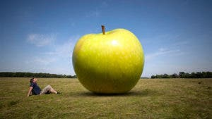 Man laying in grass and staring at huge green apple
