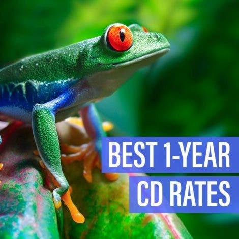 Best 1-year CD rates — November 2019