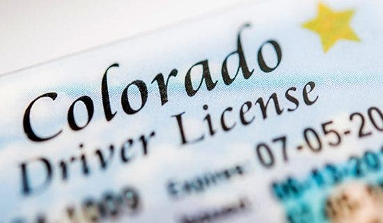 Driver's licenses and state tax returns