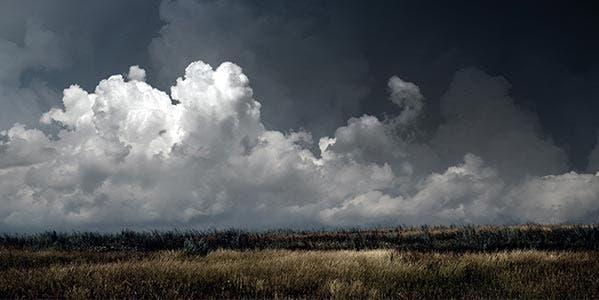 Fedorov Oleksiy/Shutterstock