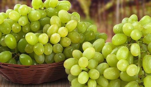 September grocery bargains © BrazilPhotos/Shutterstock.com