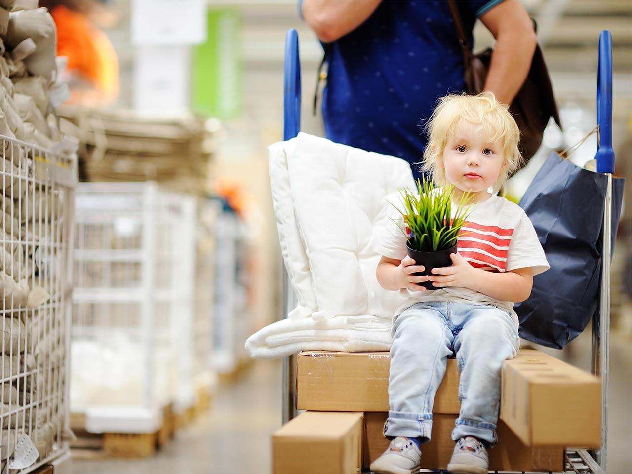 'Green Monday' deals| Maria Sbytova/Shutterstock.com