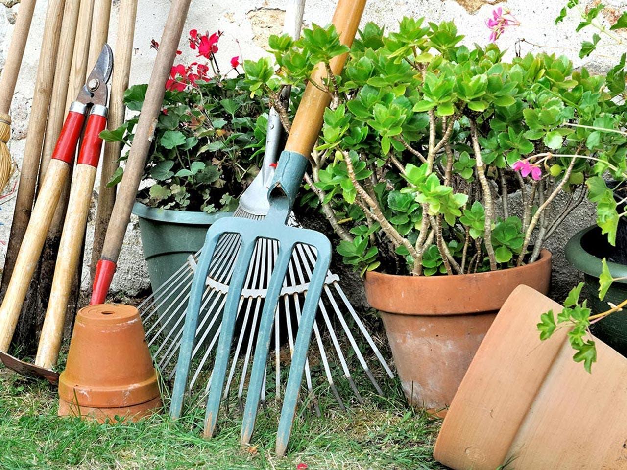 Things for the garden | sanddebeautheil/Shutterstock.com