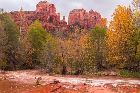 Fall season's top auto hazards © John Earl Webb/Shutterstock.com