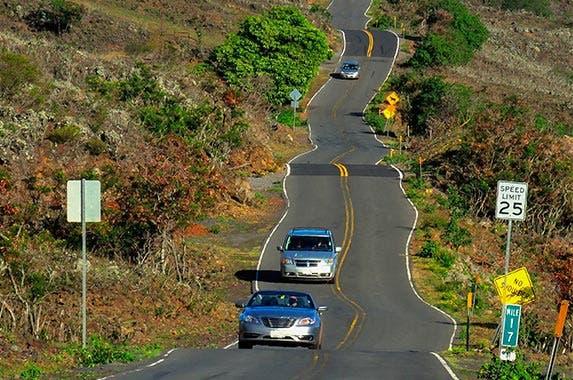 Hawaii   LUC KOHNEN/Shutterstock.com