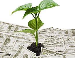 Tip No. 4: Save for retirement © Violetkaipa/Shutterstock.com