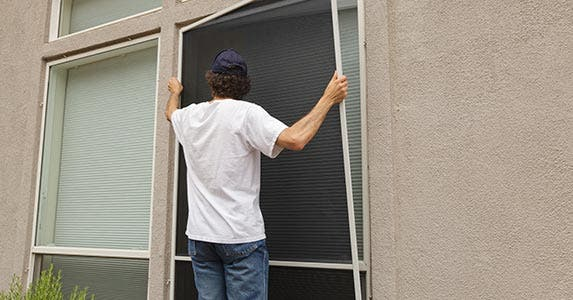 Man installing window screens