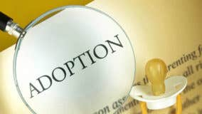The costs of adoption vs. surrogacy