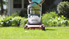 Savings challenge: Mow your own lawn