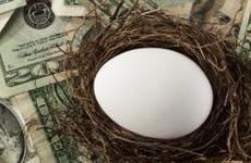 Retirement egg in nest © iStock
