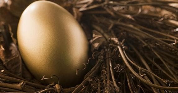 Golden retirement egg in nest © Monkey Business Images/Shutterstock.com