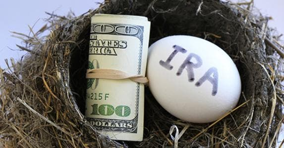 IRA egg and money in nest © Donya Nedomam/Shutterstock.com