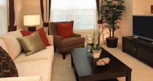 Living room furniture and TV © Neil Podoll/Shutterstock.com