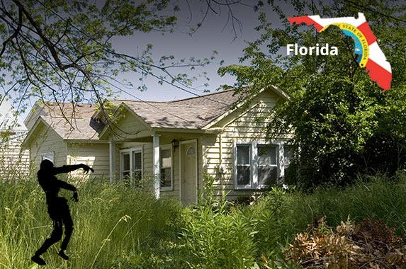 Florida © iStock
