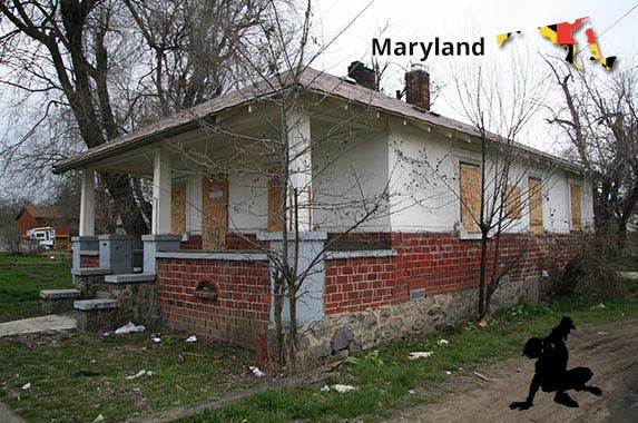 Maryland © iStock