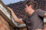 Young man inspecting roof © paul90g/Shutterstock.com