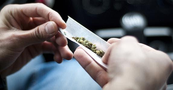 Marijuana © Nikita Starichenko/Shutterstock.com