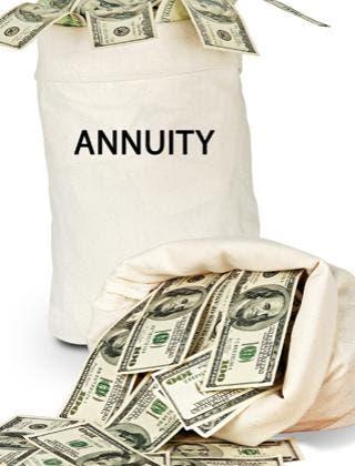 Annuity © arka38/Shutterstock.com