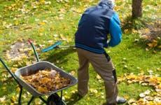 Man raking leaves © Photographee.eu/Shutterstock.com
