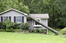 Fallen tree onto house roof © iStock