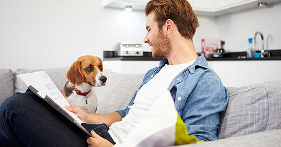 pet insurance 6 facts that might surprise you