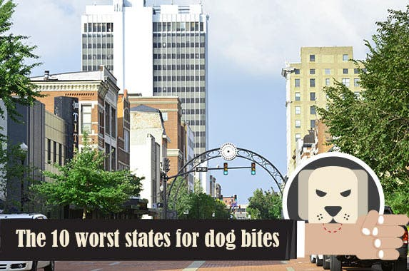 Top 10 States For Dog-Bite Claims