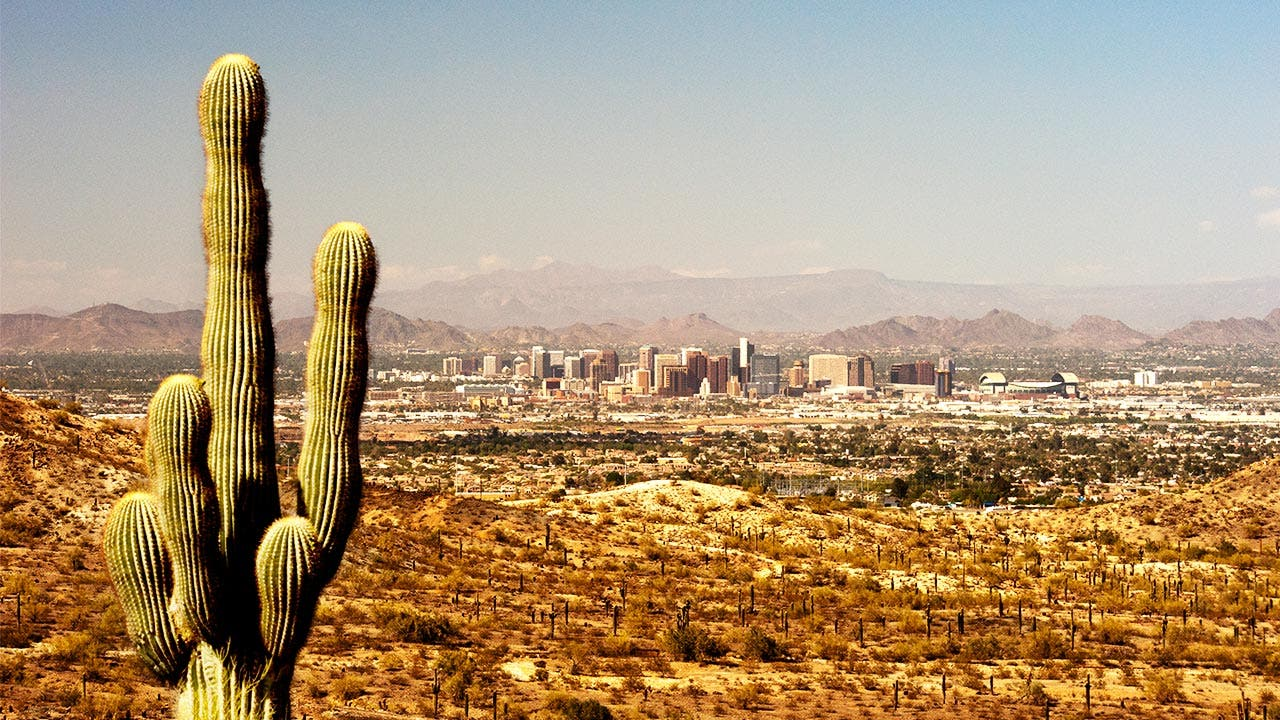 Cactus and high view of phoenix skyline