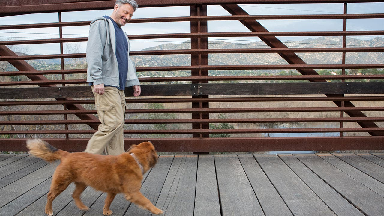 Man walking his dog on a footbridge