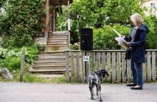 Woman walking dog checking mail