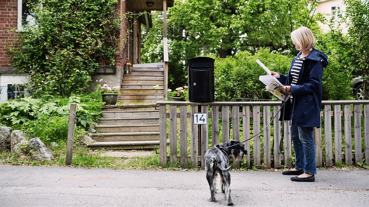 Woman walking dog checking mail