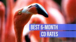 Best 6-month CD rates