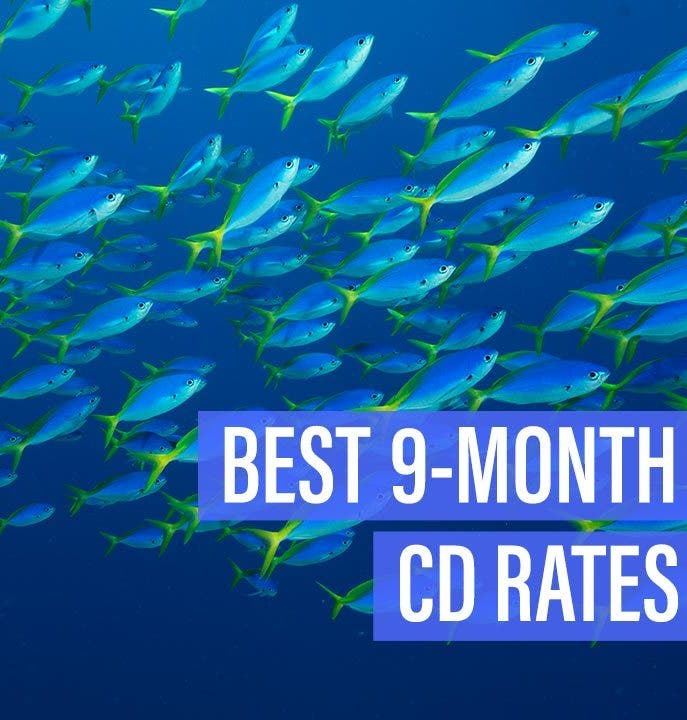 Certificate of deposit / cd account, short or long term | space.