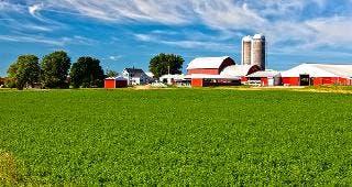 Farm © Stuart Monk/Shutterstock.com