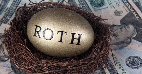 Roth egg in nest © iStock