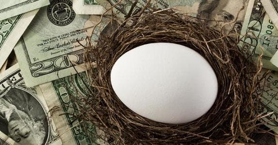 Retirement egg in nest © iStock