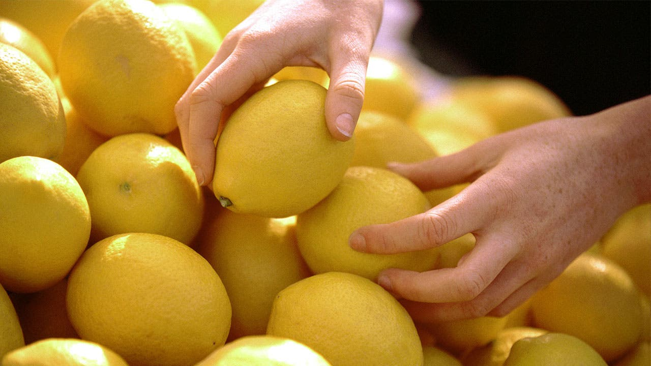 A collection of lemons