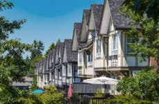 Houses on a tree lined street