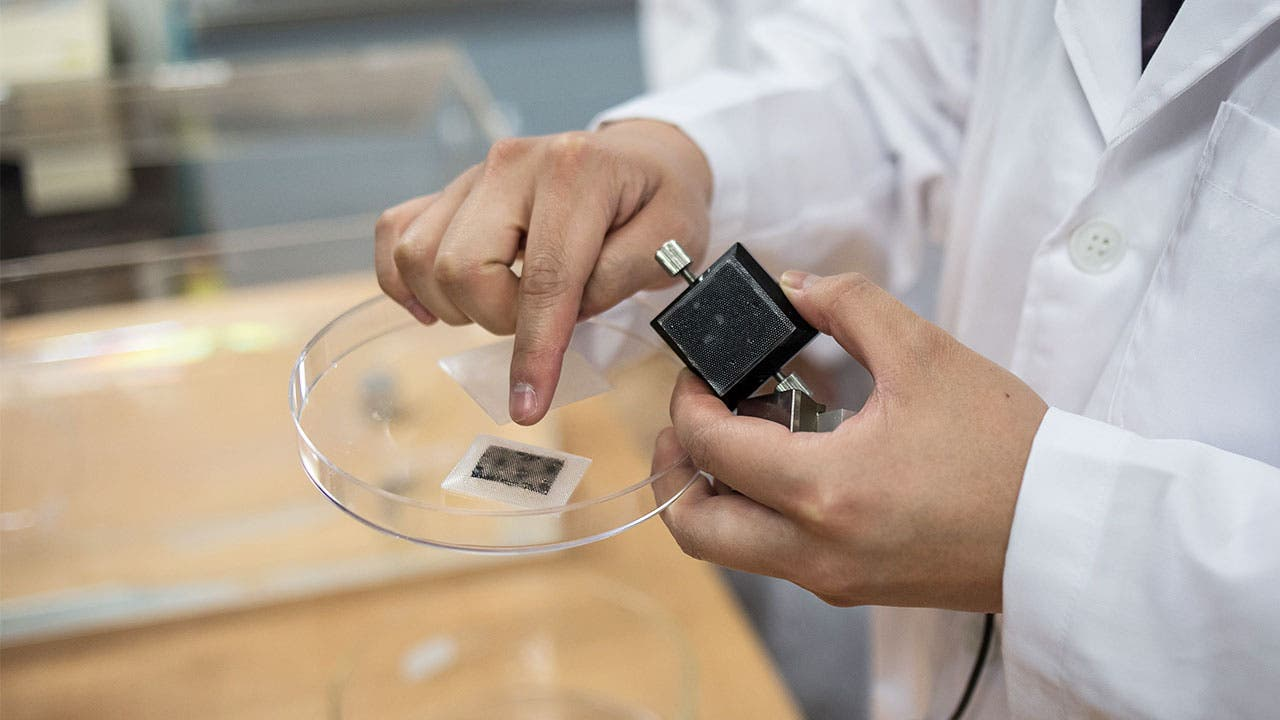 Working working with specimen in a dish