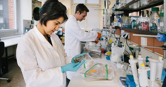 YourEncore: Scientists for hire © iStock