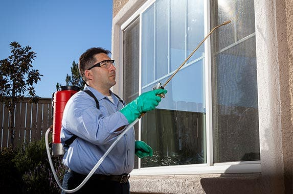 Mosquito control services | Oxford/Getty Images