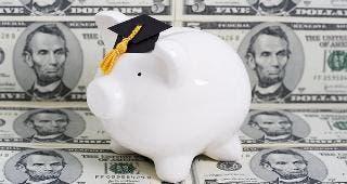White piggy bank © karen roach/Shutterstock.com