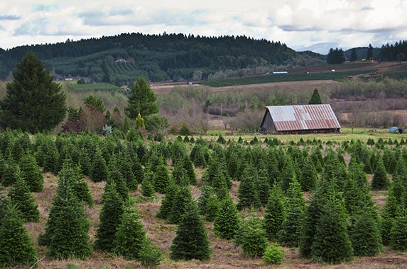 Oregon © Vlue/Shutterstock.com