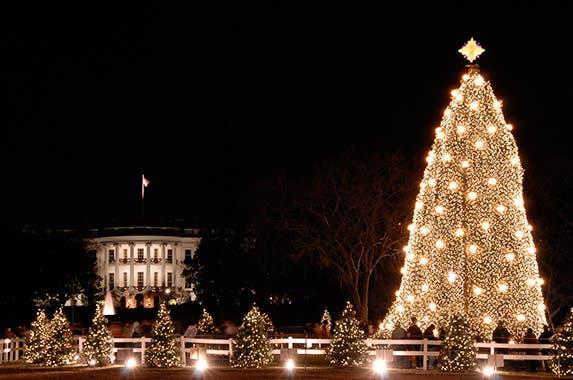 Washington, D.C. © Robert Crow/Shutterstock.com