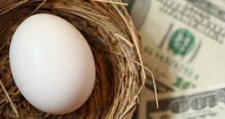 Egg in nest with money © Margie Hurwich/Shutterstock.com
