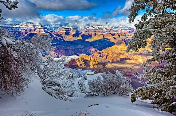 Arizona © Doug Meek/Shutterstock.com