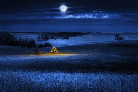 Kansas © Ricardo Reitmeyer/Shutterstock.com