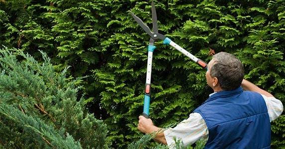'Use the home to hedge' | Dmitrijs Dmitrijevs/Shutterstock.com